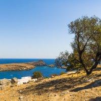 Остров Родос г. Линдос :: Виталий
