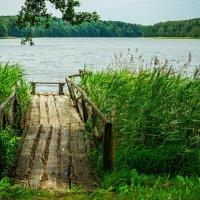 Озеро Мариново :: Игорь Вишняков