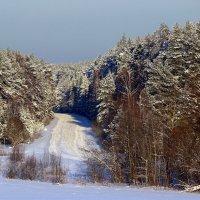 Зимняя дорога :: Михаил Власов
