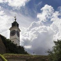 Часовая башня... :: Cергей Павлович