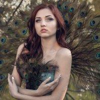 Райская птица :: Ирина Луганская