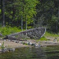 Старая лодка :: Сергей Фомичев