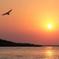 Рассвет над морем :: Мария Ганджа