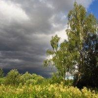 Сегодня небо тучное :: Андрей Лукьянов