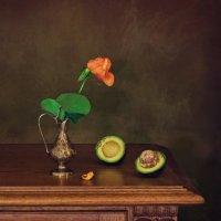 Авокадо :: Надежда