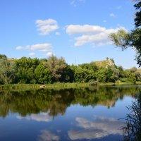Река Северский Донец. :: Виктор ЖИГУЛИН.