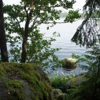 Мыс Финского залива :: Елена Смолова
