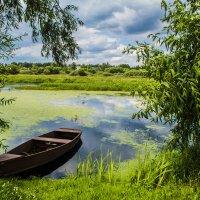 Где-то на реке Остёр! :: Павел Данилевский