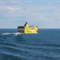 Встреча в море :: Евгений Никифоров