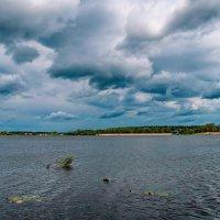 Озеро Гусь :: Дмитрий Янтарев