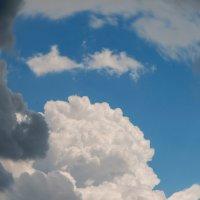 Встреча разных туч,небо,тучи,красота,контраст :: Сергей Форос