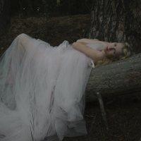 Спящая красавица :: Анна Городничева