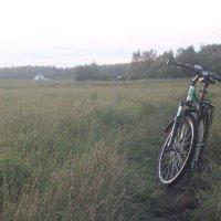 Велопрогулка :: Дмитрий
