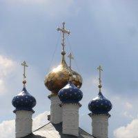 Город Вязьма. Купола... :: Владимир Павлов