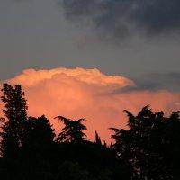 Облако , освещенное заходящим солнцем :: valeriy khlopunov