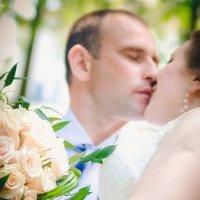 Свадебные сладости :: Оксана Ушанкова
