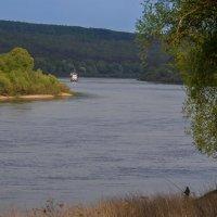 река Ока :: Андрей Масаев