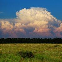 нереальные реальные облака :: Elina Bagi