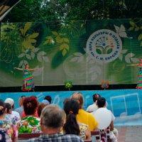 Праздник, танцы,веселье :: Света Кондрашова