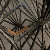 Spiderweb :: Надежда Кунилова