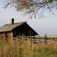 Старая баня в заброшенной деревеньке Боталово... :: Александр Широнин