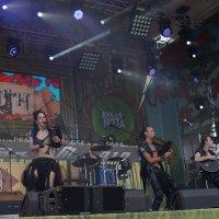 """Выступление на фестивале""""Дикая Мята"""" :: Серж Поветкин"""