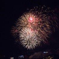 День города Новосибирска 2016 :: Екатерина Бильдер