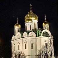 Екатерининский Собор :: Олег Попков