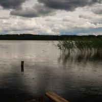 Дождь :: Сергей Григорьев