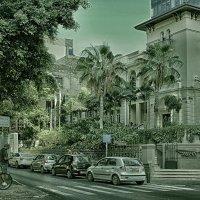 Тель-Авив, бульвар Ротшильда.3 :: Larisa