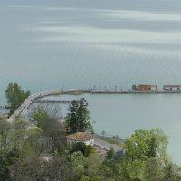 Озеро Балатон :: Борис Гольдберг