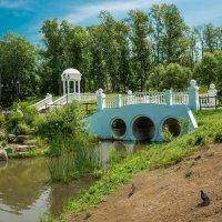Северный парк в Хабаровске! :: Ирина Антоновна