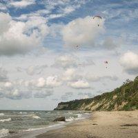 Летним днём на побережье :: Александр Степовой