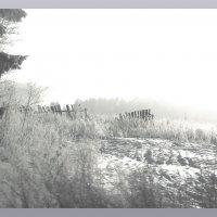Дело к зиме.... :: Александр Широнин