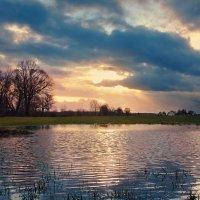 зимним вечером после дождя :: Elena Wymann