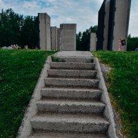 лестница в небо :: Света Кондрашова