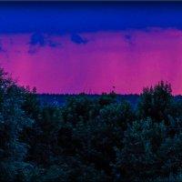 nature :: Юлия Денискина
