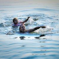 Хороша вода на озере Увильды :: Владимир