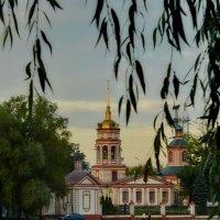 Летний вечер :: Olcen - Ольга Лён