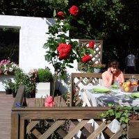 В садике :: Дмитрий Никитин