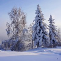 Сибирская зима :: Галина Подлопушная