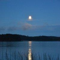 Лунный свет озаряет эту ночь :: Антонина Говор