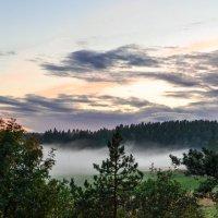 Туман в долине :: Антонина Говор
