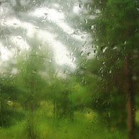Дождь :: Сергей Акимов