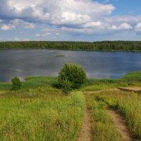 Дорога к озеру. :: Ирина Нафаня