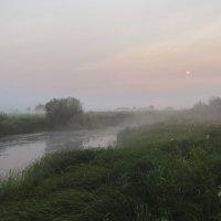 Мокрое утро... :: Фёдор Куракин