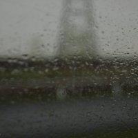 Дождь :: Ольга Суханова