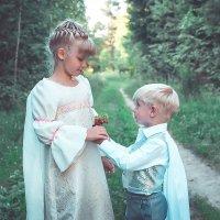 маленький принц :: Николай Шейкин