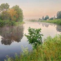 Утро на реке :: Валерий Талашов