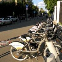 Велосипеды на прокат... :: Елена